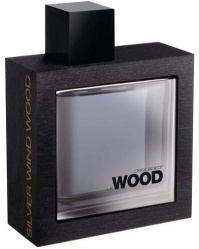 Dsquared2 He Wood Silver Wind Wood - EdT 100ml (tester)